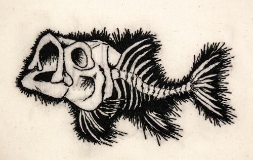 fish.skeleton.front