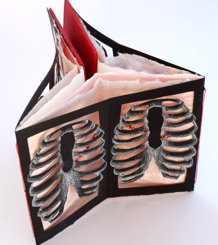 2.ribcage.structure.02