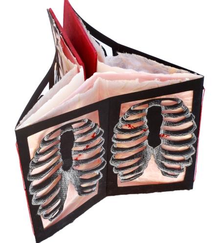 anatomy study 1 copy