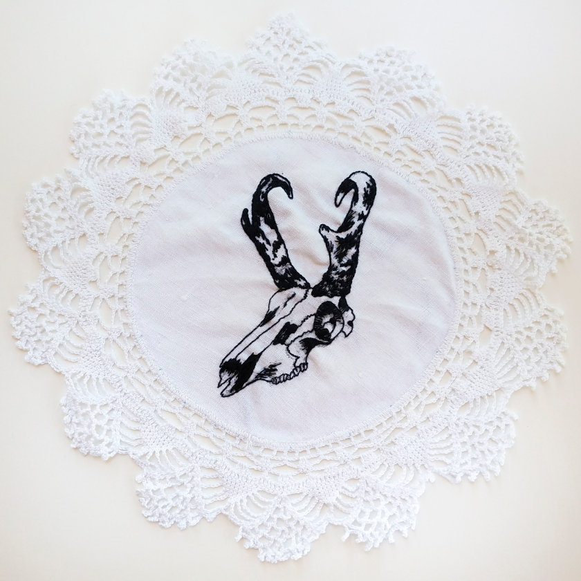 Antelope Skull on Doily